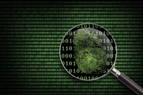 5 Common Courses in a Cyber Security Degree Program